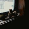 弘兼憲史氏黙認パロディ@修羅の国 「社畜!修羅コーサク」 第1巻 江戸パイン 【